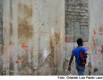 graffiti_tiburon