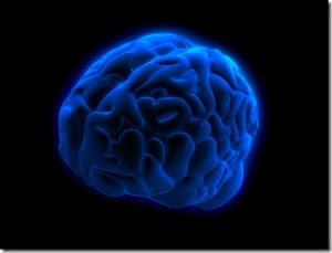 blue-brain-project-cerebro-computarizado_1_728157-300x229