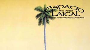 Espacio-Laical_CYMIMA20140612_0001_16