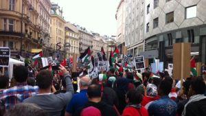 Manifestantes-propalestinos-Viena-Luz-Escobar_CYMIMA20140721_0007_13